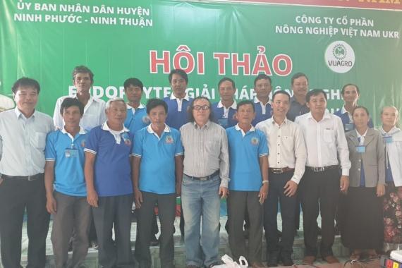 Ninh Phước, Ninh Thuận áp dụng giải pháp Endophyte
